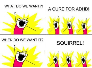 Adhd squirrels